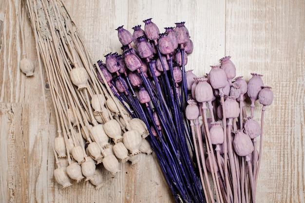 Schöne dekorationselemente bestehend aus farbigen und glitzernden getrockneten poppers