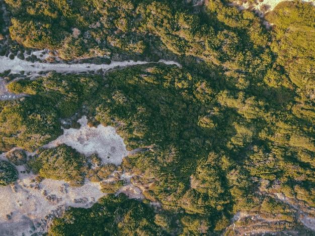 Schöne draufsichtaufnahme von grün und sand an der küste
