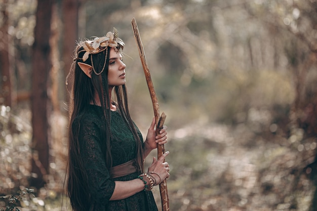 Schöne elfenfrau, feenwald mit den langen ohren, goldene kranzkrone des langen dunklen haares auf kopf