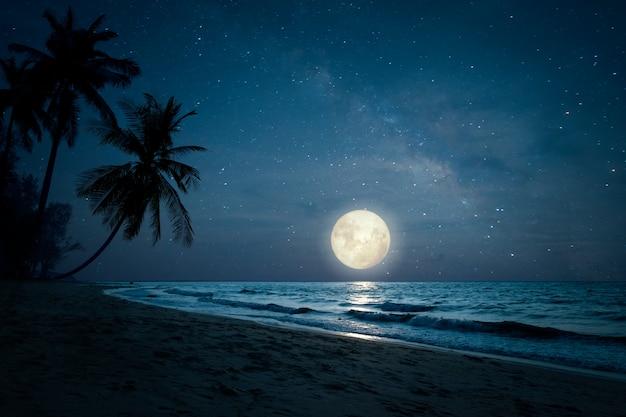 Schöne fantasie des tropischen strandes der landschaft mit schattenbildpalme in den nächtlichen himmeln und im vollmond