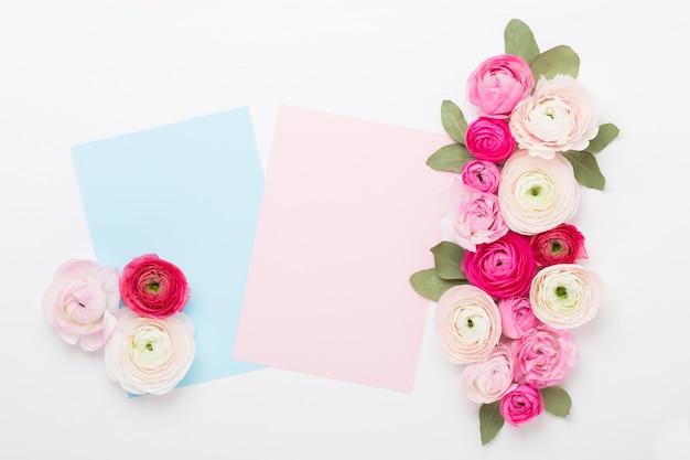 Schöne farbige ranunkelblumen auf einem weißen hintergrund. leere papiergrußkarte