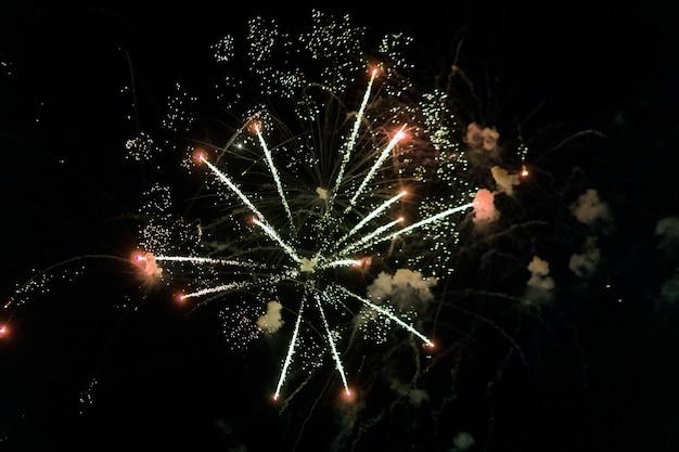 Schöne feuerwerksanzeige auf himmel nachts für feier im ereignis