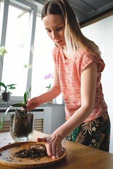 Schöne frau, die blumen zu hause verpflanzt