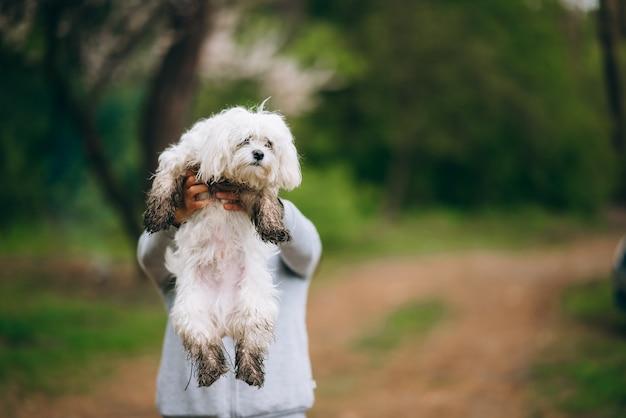 Schöne frau, die einen hund im arm hält
