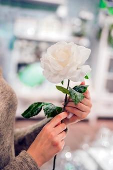 Schöne frau hände mit rose. zarte blume in den händen des jungen mädchens