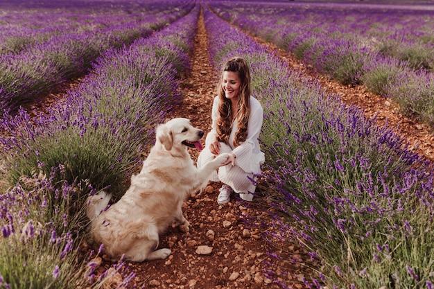 Schöne frau mit ihrem hund des goldenen apportierhunds auf den lavendelgebieten bei sonnenuntergang.