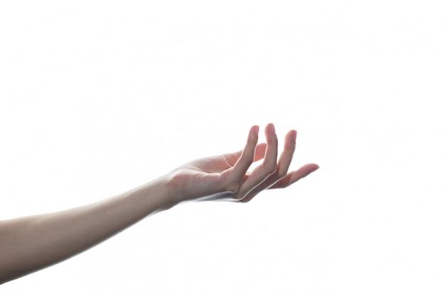 Schöne frauenhand lokalisiert auf weißem hintergrund. handfläche hoch, handfläche öffnen.