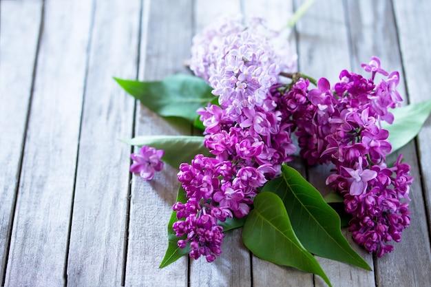 Schöne frische lila violette blumen auf einem hölzernen hintergrund. frühlingsfliederblume.