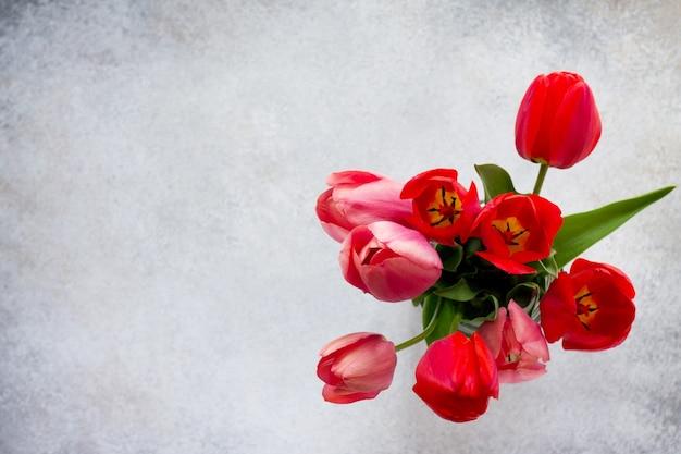 Schöne frische rosa und rote tulpenblumen.