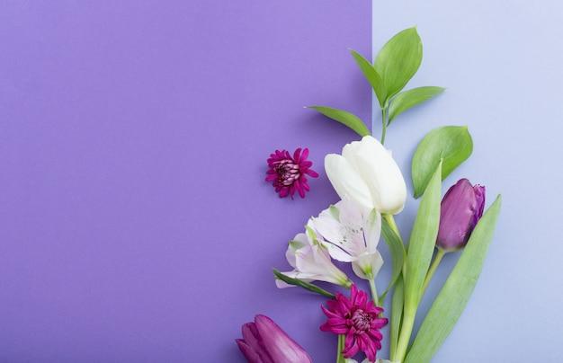 Schöne frühlingsblumen auf papieroberfläche