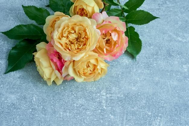 Schöne gelb-rosa rosen