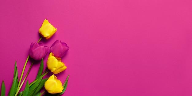 Schöne gelb-rosa tulpen auf einem rosa hintergrund