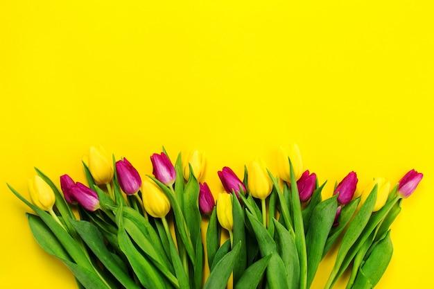 Schöne gelbe lila oben blüte