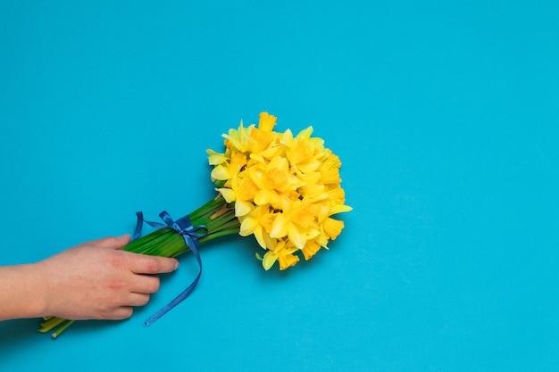 Schöne gelbe narzissen in der weiblichen hand auf einem blauen hintergrund
