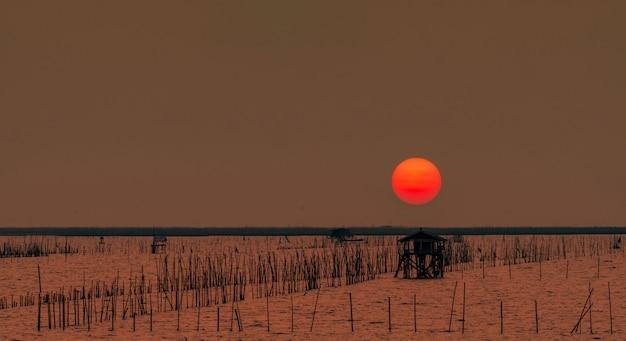 Schöne große sonne im sommer. sonnenunterganghimmel über dem meer, der fischerhütte und dem mangrovenwald am abend. bambusstange an der küste. bambusstickerei zur verlangsamung der welle beugt küstenerosion vor.