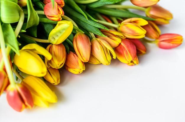 Schöne grußkarte mit tulpen für muttertag, hochzeit oder glückliches ereignis. weißer hintergrund. draufsicht. speicherplatz kopieren