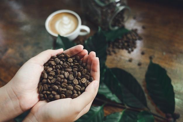 Schöne hände, die kaffeebohnen halten