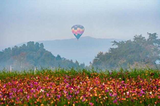 Schöne heißluftballonansicht auf buntem sonnenuntergangshintergrund über bäumen nahe den bergen