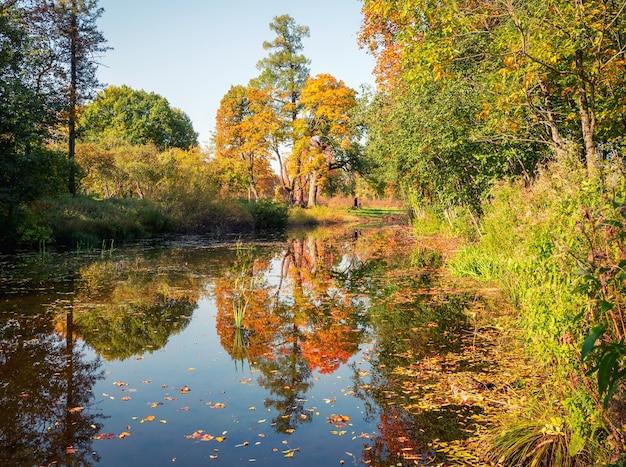 Schöne herbstansicht des verlassenen demidovsky-parks, taitsy russland