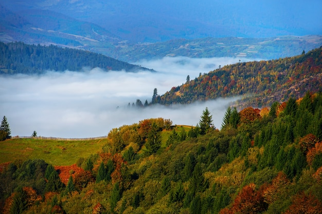 Schöne herbstlandschaft in den bergen karpaty in den vorderteilen