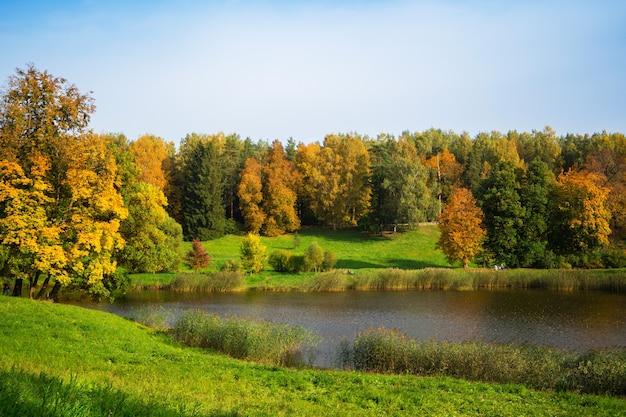 Schöne herbstlandschaft mit goldenen bäumen am see. pawlowsk. russland.