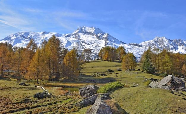 Schöne herbstliche alpine landschaft mit gelben lärchen und schneebedeckten gebirgszügen unter einem blauen himmel