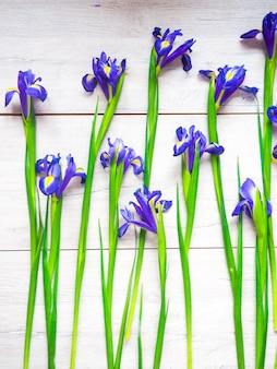 Schöne iris blüht auf hölzernem hintergrund, feiertag, grußkarte
