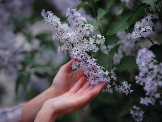 Schöne junge asiatische frau, die das blühen der blumen im frühjahr genießt. nacktes make-up. nahaufnahme von weiblichen händen
