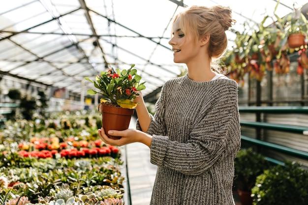Schöne junge frau im gestrickten kleid, das braunen topf mit pflanze hält und im gewächshaus aufwirft.