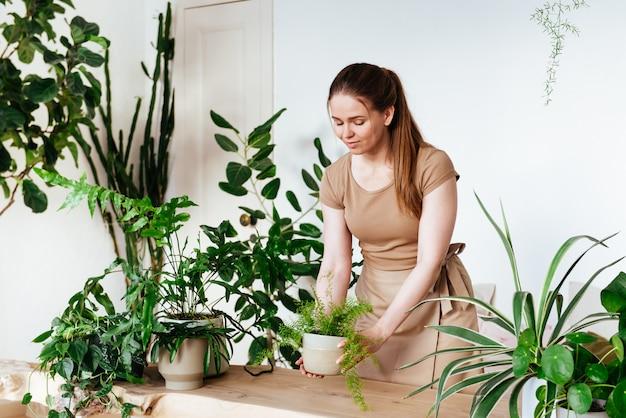 Schöne junge frau mit schürze stellt einen topf mit zimmerpflanze vorsichtig auf den tisch. pflege von pflanzen zu hause