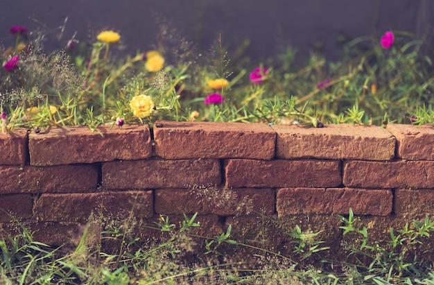 Schöne kleine gelbe blume über schmutzbacksteinmauer, retro- effekt