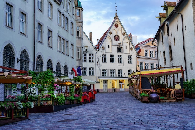 Schöne kopfsteinpflasterstraße in der stadt tallinn mit holzbänken und blumen