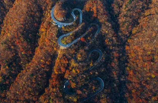 Schöne kurvige straße auf dem nikko-berg, japan. luftaufnahme