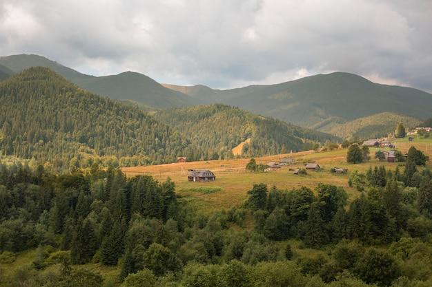 Schöne ländliche aussicht mit bäumen