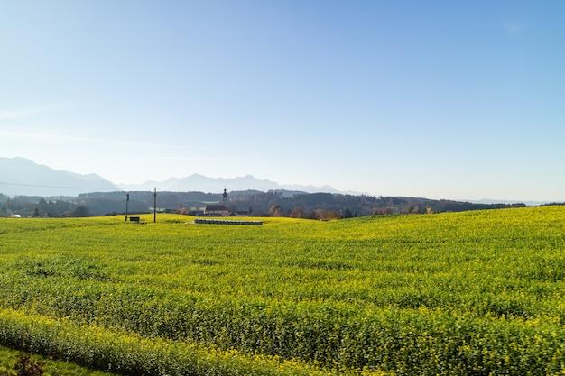 Schöne ländliche landschaft des herbstes mit den landwirtschaftlichen feldern des grünen bauernhofs auf einem hintergrund des klaren blauen himmels und der silhouette der berge, österreich.