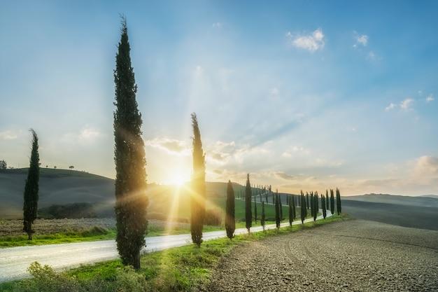 Schöne ländliche landschaft mit zypressen und hügeln