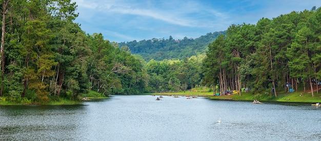 Schöne landschaft aus see und baumwald mit see