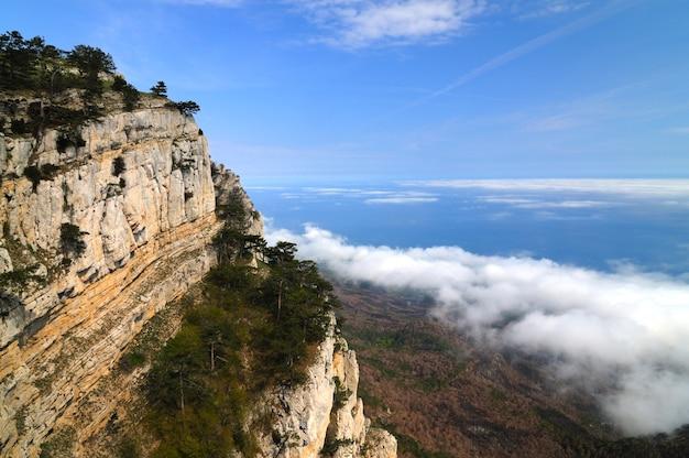 Schöne landschaft, baum wächst auf felsigem berg, waldtal und blauem himmel mit weißen wolken