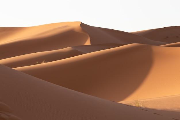 Schöne landschaft der sanddünen in einem wüstengebiet an einem sonnigen tag Kostenlose Fotos