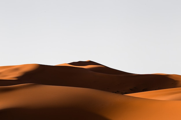 Schöne landschaft der sanddünen in einem wüstengebiet an einem sonnigen tag