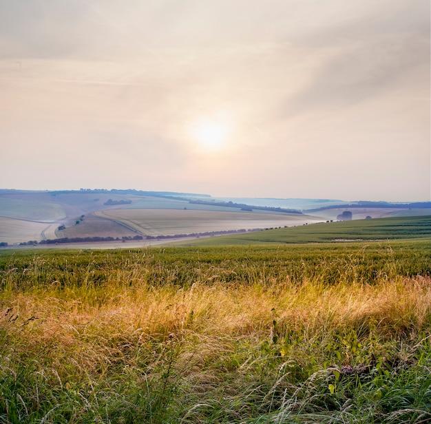 Schöne landschaft des nebligen sonnenaufgangs über der landschaft in wiltshire, uk