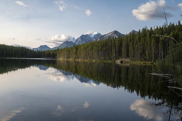 Schöne landschaft einer landschaft
