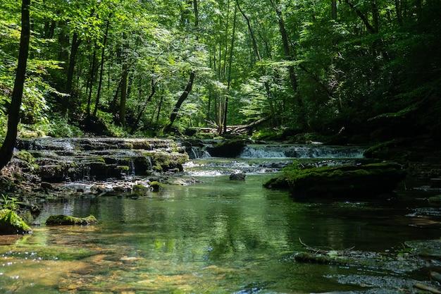 Schöne landschaft eines flusses, der tagsüber von grün umgeben ist