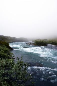 Schöne landschaft eines flusses umgeben von grünen pflanzen im nebel in norwegen