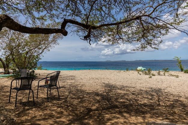 Schöne landschaft eines strandes perfekt für sommernachmittage in bonaire, karibik