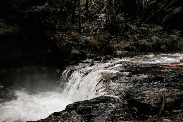 Schöne landschaft eines wasserfalls in einem wald, umgeben von nebel und bäumen an einem regnerischen tag