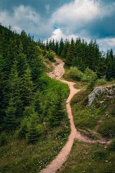 Schöne landschaft eines weges auf einem hügel, umgeben von grün unter einem bewölkten himmel