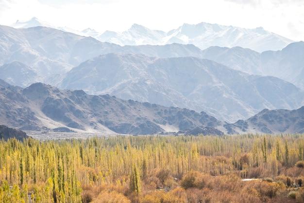Schöne landschaft, herbstfarben und himalaya-berge im oktober von leh ladakh, nördlicher teil von indien