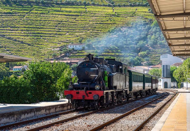 Schöne landschaft mit einem dampfenden zug auf dem weg nach pinhao in portugal