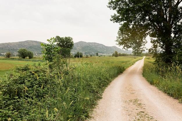 Schöne landschaft mit landstraße